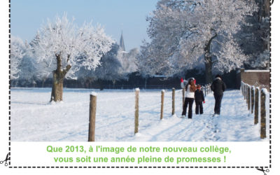 Avis en vert n°62 – Hiver 2012-2013