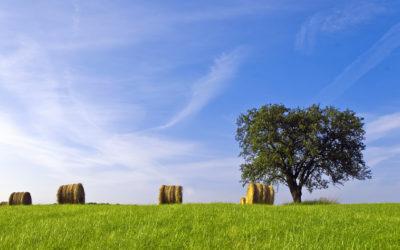 La dégradation des sols est dramatique