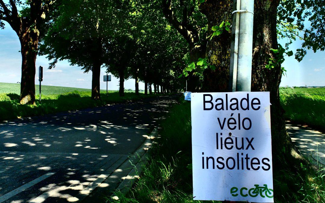 4e balade vélo ECOLO. Un grand cru ensoleillé…